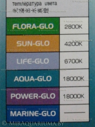 Цветовая температура ламп Hagen Glo