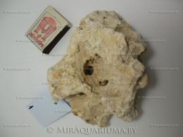 stones-1-02