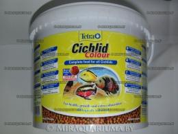 tetra-cichlid-colour-02