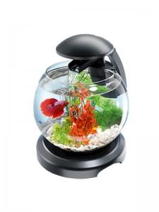 Тетра Каскад Глобе - маленький аквариум из стекла с навесным фильтром