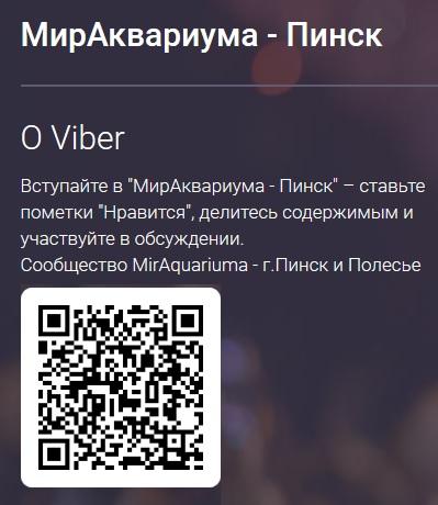 Viber сообщество 'МирАквариума - Пинск'