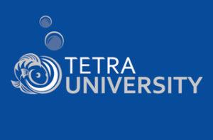 Логотип Tetra University
